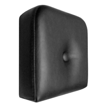 Sissybar_Pillows_4d03825459f5d.png